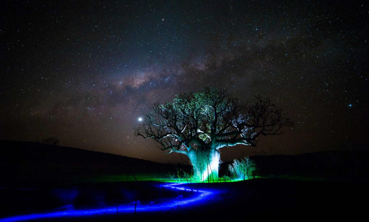 Light Painting Baobab tree Western Australia