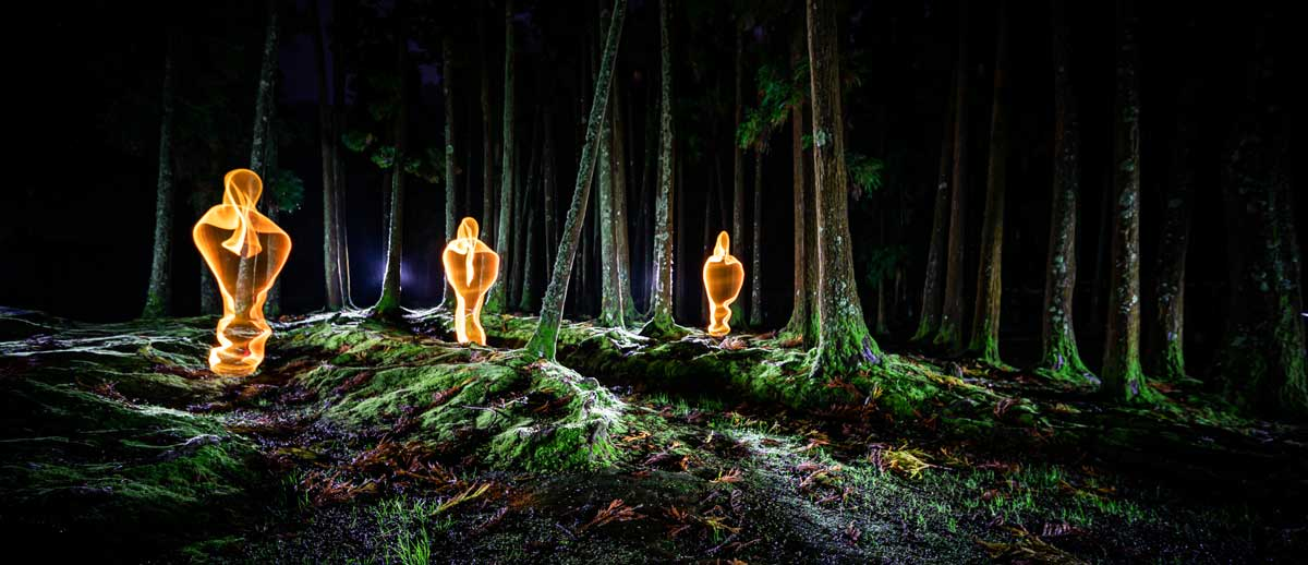 Light Painting Azores Forest